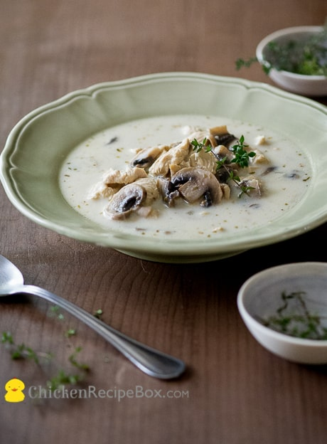 Easy Creamy Mushroom Chicken Soup Recipe. You'll love this amazing soup from BestRecipeBox.com