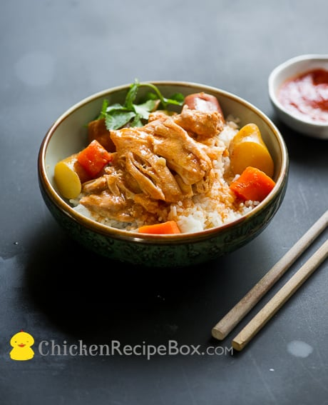 Delicious and Easy Slow Cooker Asian Chicken Stew on BestRecipebox.com