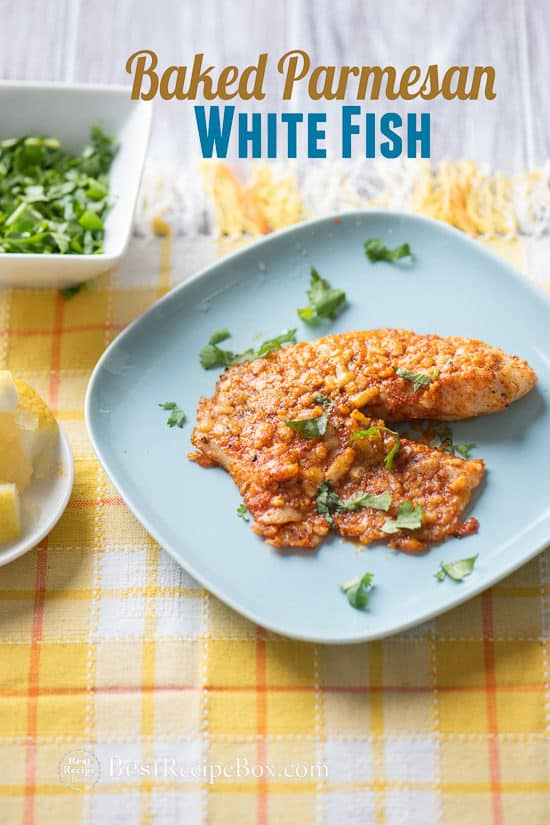 Baked Parmesan White Fish Recipe on a plate