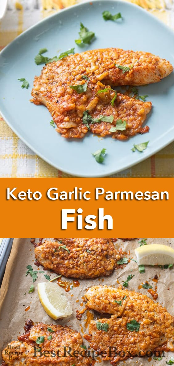 Baked Parmesan White Fish Recipe @bestrecipebox