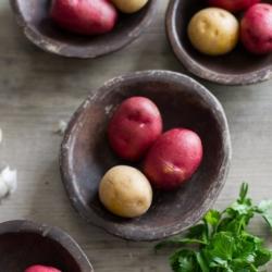 Best Christmas Potato Recipes l Scalloped Potatoes   @bestrecipebox