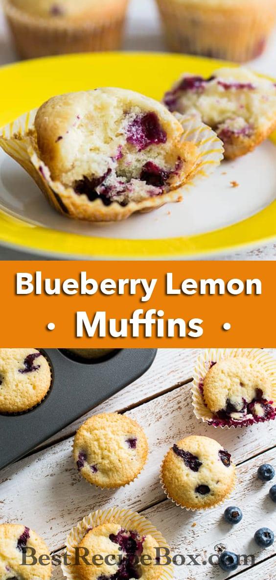 Blueberry Lemon Buttermilk Muffins for Breakfast or Brunch   @bestrecipebox