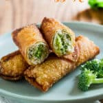 Broccoli and Cheese Chicken Egg Rolls are a family favorite! | @bestrecipebox