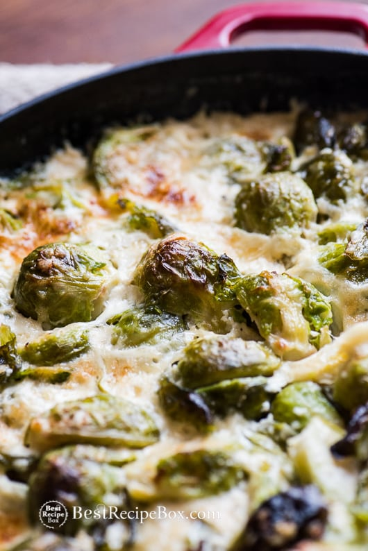 Cheesy Brussels Sprouts Gratin Casserole Recipe for Thanksgiving | @bestrecipebox