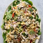 Big platter of pasta salad recipe with chicken, spinach and blue cheese by bestrecipebox.com