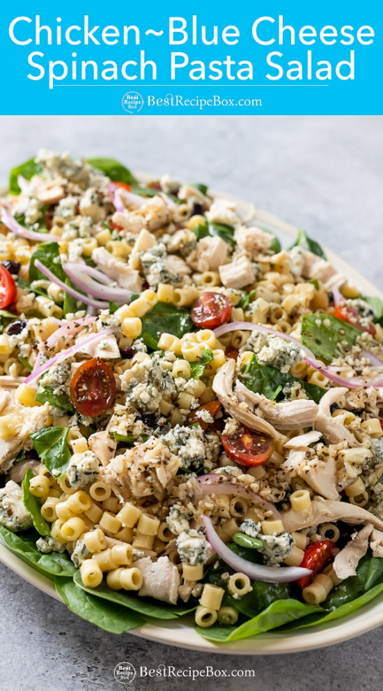 Bowl of chicken blue cheese spinach pasta salad on plate