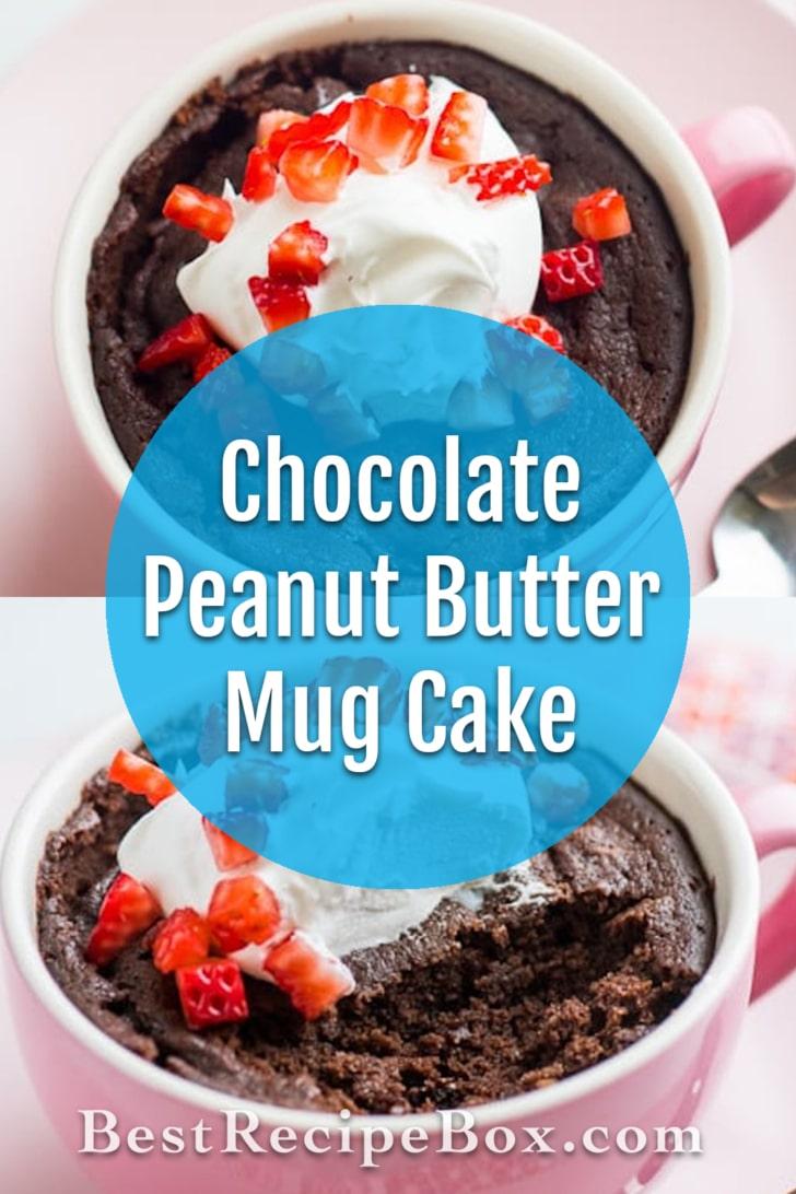 Chocolate Peanut Butter Mug Cake in 5 minutes!   @bestrecipebox