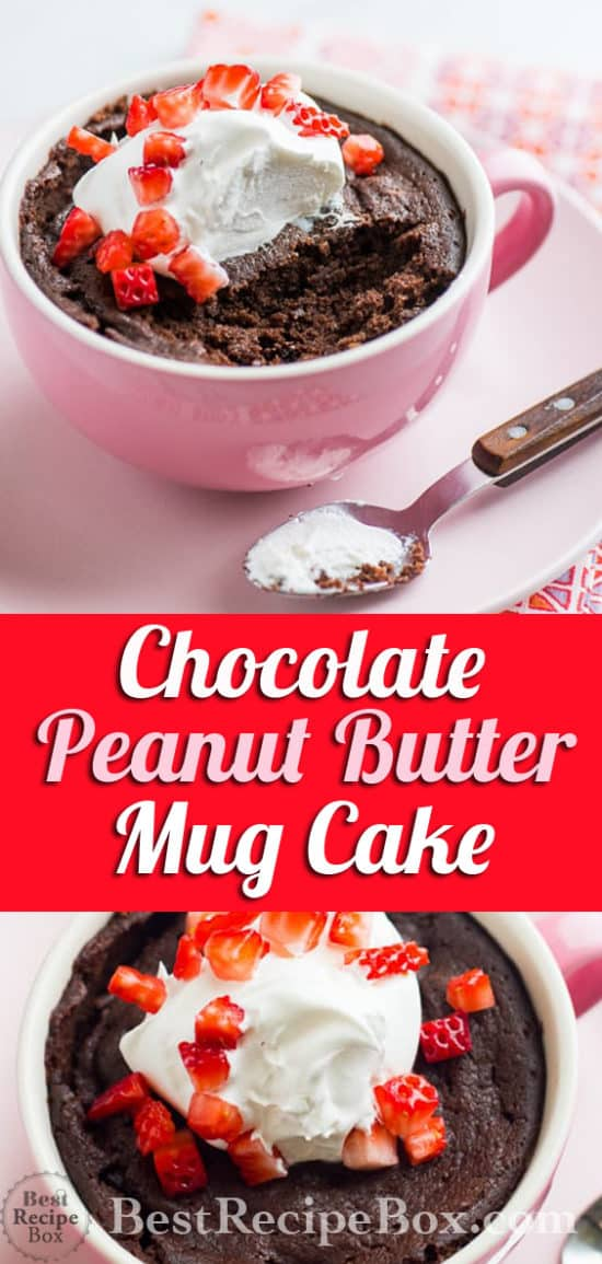 Chocolate Peanut Butter Mug Cake in 5 minutes! | @bestrecipebox