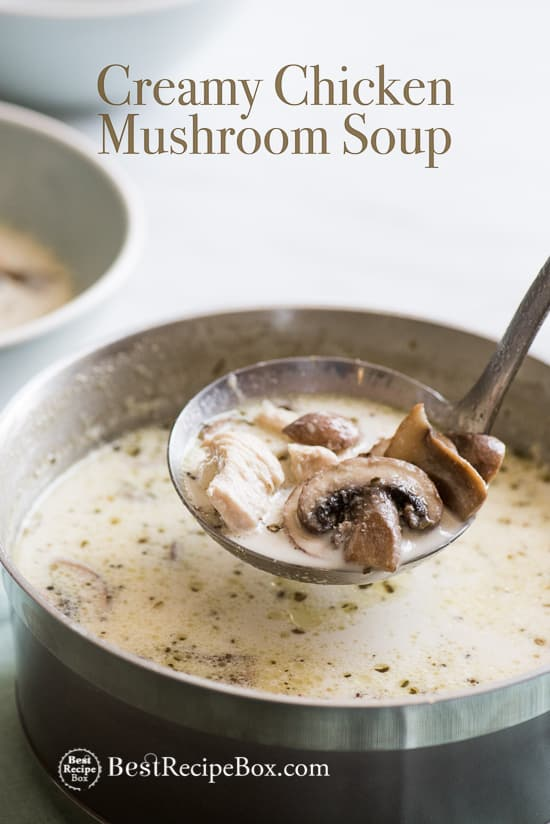 Creamy Chicken Mushroom Soup Recipe that's Quick and Easy by BestRecipeBox.com | @bestrecipebox