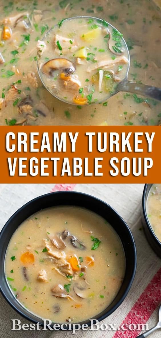 Creamy turkey vegetable soup or chicken soup recipe   BestRecipeBox.com
