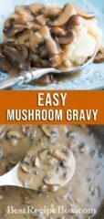 Best Mushroom Gravy Recipe or Mushroom Sauce Recipe for Potatoes | @bestrecipebox