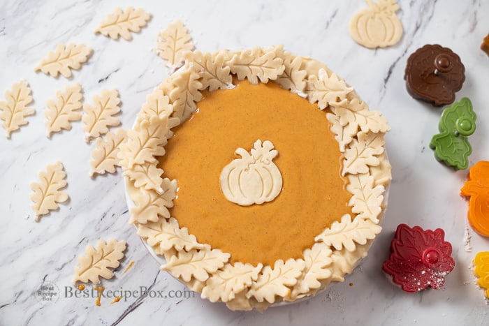Fall Pie Designs Autumn Leaves Turkey Pumpkins Acorns for Thanksgiving Pies @BestRecipeBox