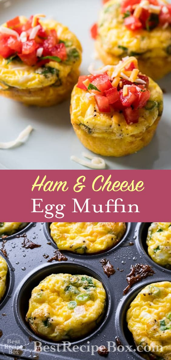 Ham Cheese Egg Muffins Recipe for Breakfast Brunch Recipes | @bestrecipebox