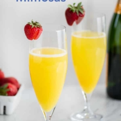 Mimosa Recipe with Sparkling Wine and Orange Juice | BestRecipeBox.com