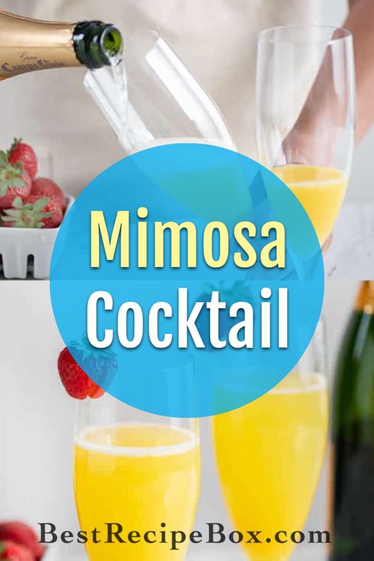 Mimosa Recipe with Sparkling Wine and Orange Juice   BestRecipeBox.com