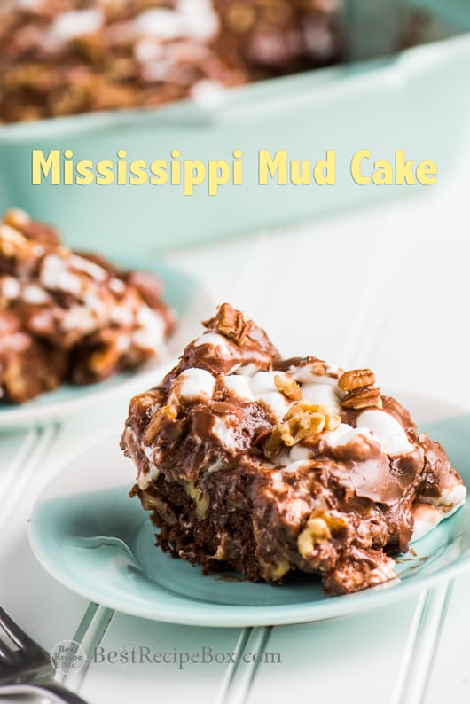 Mississippi Mud Cake Recipe aka Rocky Road Cake Recipe it's amazing! | @bestrecipebox