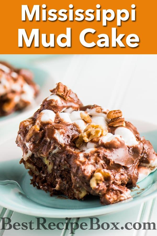 Mississippi Mud Cake Recipe aka Rocky Road Cake Recipe it's amazing!   @bestrecipebox