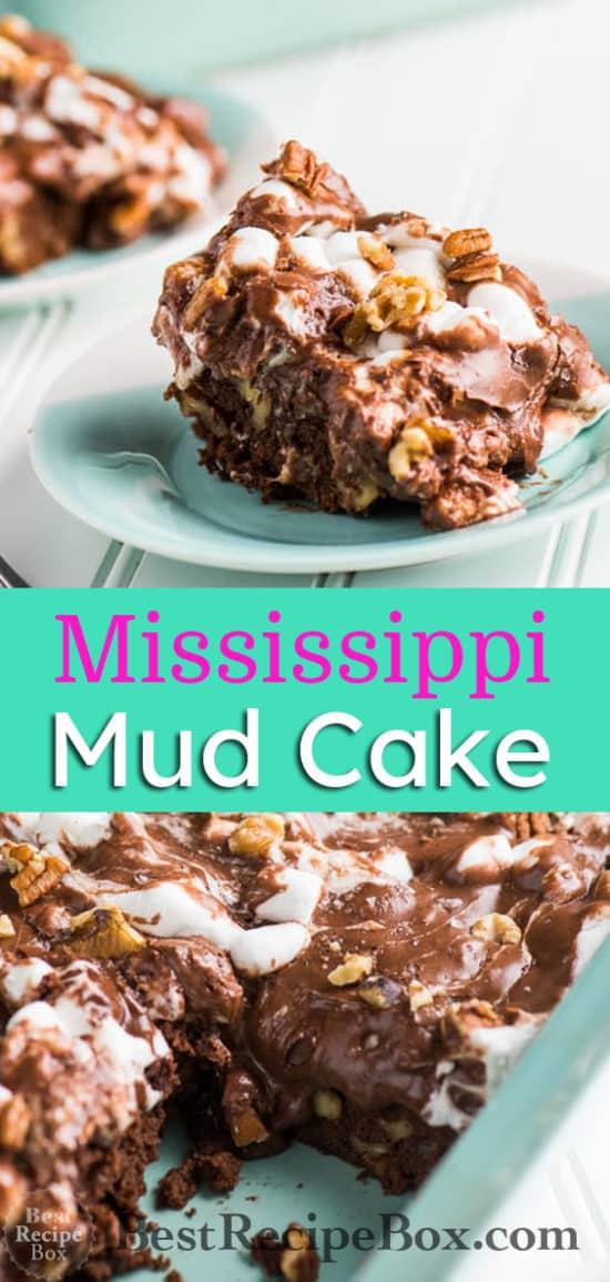 Mississippi Mud Cake Recipe aka Rocky Road Cake Recipe it's amazing! | @bestrecipebox