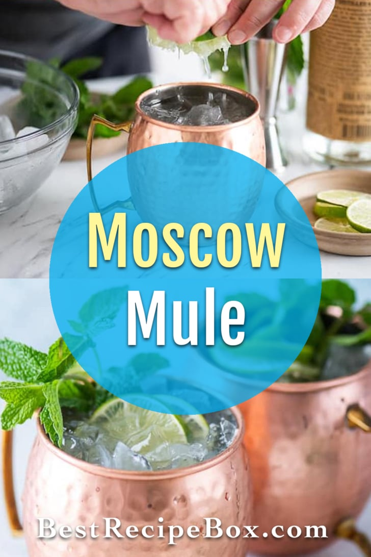 Best Moscow Mule Cocktail Recipe with Vodka, Ginger Beer   BestRecipeBox.com