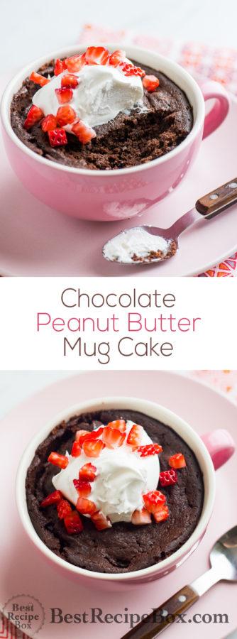 Chocolate Peanut Butter Mug Cake in 5 minutes! | @bestrecipebox