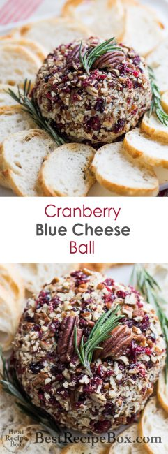 Cranberry Blue Cheese Ball for cheese ball appetizer platter | @bestrecipebox