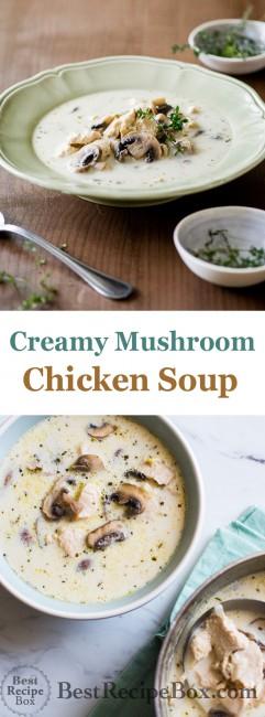 Creamy Chicken Mushroom Soup Cream Chicken Soup