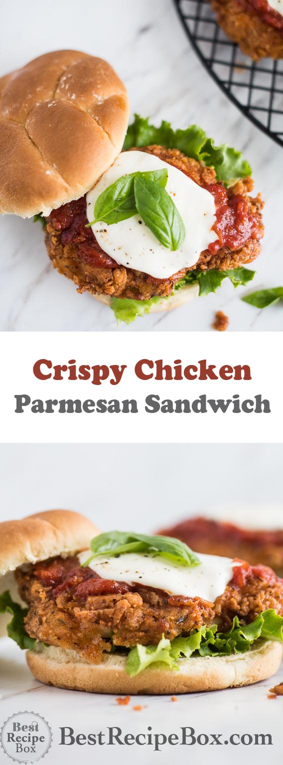Crispy Chicken Parmesan Sandwich with Best Parmesan Chicken Recipe | @bestrecipebox