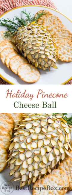 Holiday Appetizer recipe