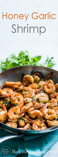 Easy Honey Garlic Shrimp Recipe in 20 minutes | @bestrecipebox