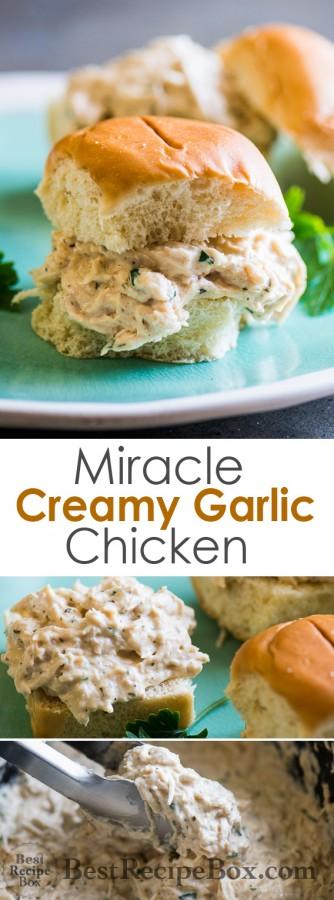 Miracle Creamy Garlic Chicken in Slow Cooker is AMAZING   @bestrecipebox