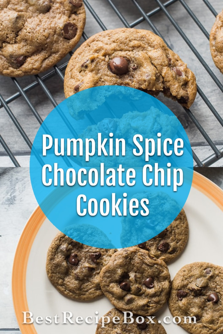 Pumpkin Spice Chocolate Chip Cookies for Thanksgiving and Holidays   @bestrecipebox