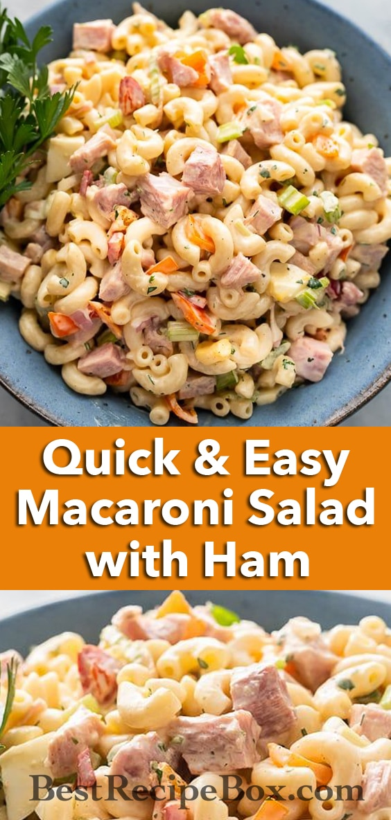 Classic Macaroni Salad Recipe with Ham Quick and Easy - BestRecipebox.com