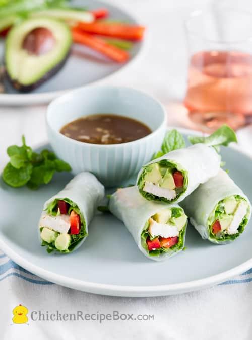 chicken avocado spring rolls recipe on a plate
