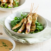 Asian Chicken Satay Skewers with Peanut Dip