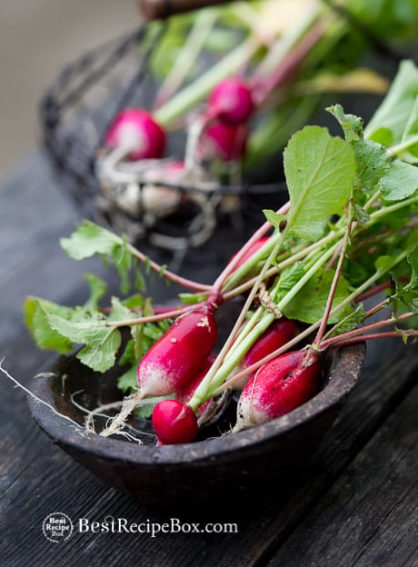Crunchy, Healthy and Easy Radish Avocado Salad Recipe in 15 minutes on BestRecipeBox.com